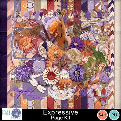 Pbs_expressive_pkall