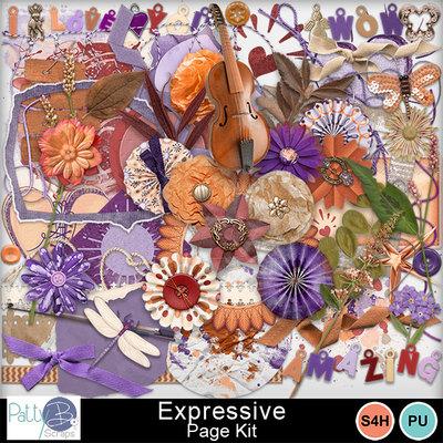 Pbs_expressive_pkele