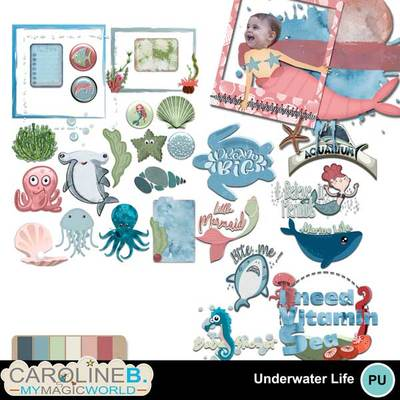 Underwaterlife_2