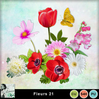Louisel_cu_fleurs21_preview