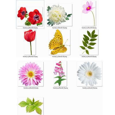 Fleurs21