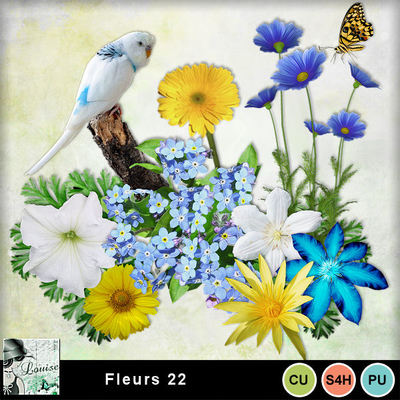 Louisel_cu_fleurs22_preview