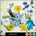 Louisel_cu_fleurs22_preview_small