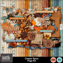 Aimeeh_copperspice_kit_small