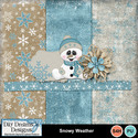 Snowyweather1_small