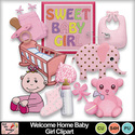 Welcome_home_baby_girl_clipart_preview_small