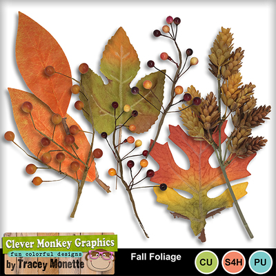 Fall_foliage_mm