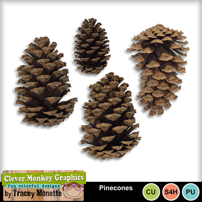 Pinecones_mm_preview