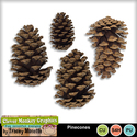 Pinecones_mm_preview_small