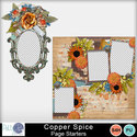Pbs_copper_spice_page_starters_small