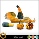 Wintersquash__1__small