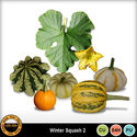 Wintersquash__2__small