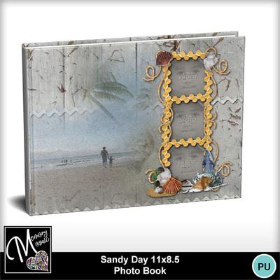 Sandy_day_11x8