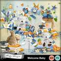 Pv_welcomebaby_clusterspack2_florju_small