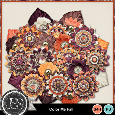 Color_me_fall_flowers