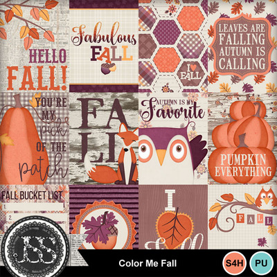 Color_me_fall_pocket_scrap_cards