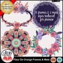 Fleurdeorange_frames_mats_small