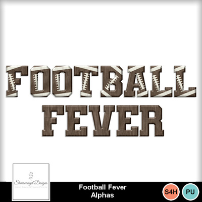 Sd_footballfever_ap