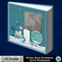 Winter_blue_christmas_12x12_pb-001a_small