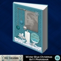 Winter_blue_christmas_8x11_pb-001a_small