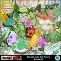 Dites_le_avec_des_fleurs_bdl01_small