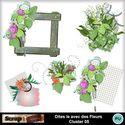 Dites_le_avec_des_fleurs_cluster05_small