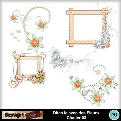 Dites_le_avec_des_fleurs_cluster03