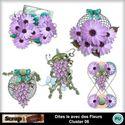 Dites_le_avec_des_fleurs_cluster06_small