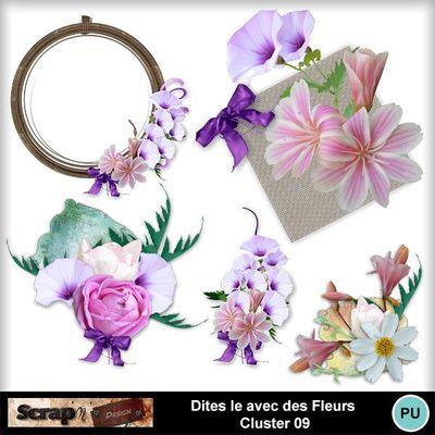 Dites_le_avec_des_fleurs_cluster09