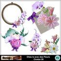 Dites_le_avec_des_fleurs_cluster09_small