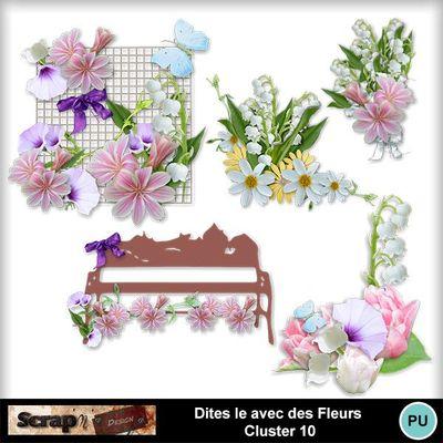 Dites_le_avec_des_fleurs_cluster10