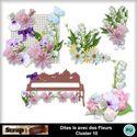 Dites_le_avec_des_fleurs_cluster10_small