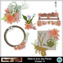 Dites_le_avec_des_fleurs_cluster11_small