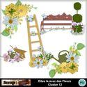 Dites_le_avec_des_fleurs_cluster12_small