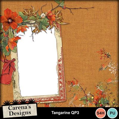 Tangarine-qp3