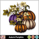 Autumn_pumpkins_preview_small