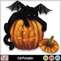 Cat_pumpkin_preview_small