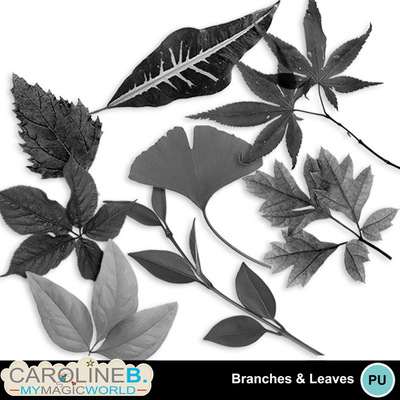 Branches-and-leaves_1