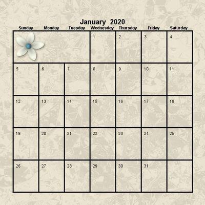 2020_pretty_12x12_calendar-003