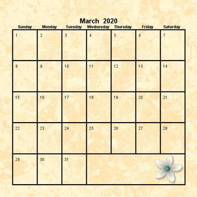 2020_pretty_12x12_calendar-007