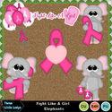 Fight_like_a_girl_elephants--tll_small