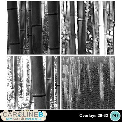 Overlays-29-32_1