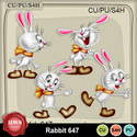 Rabbit647_small