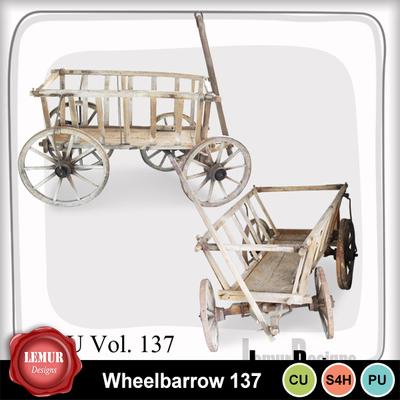 Wheelbarrow137