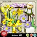 Autumn_490_small