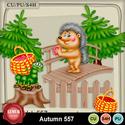 Autumn_557_small