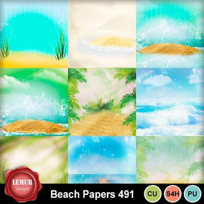 Beach_491