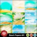 Beach_491_small