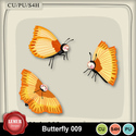 Butterfly_009_small