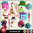 Christmas_229_small
